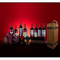 Multipl Wine Bottles (8) SdL